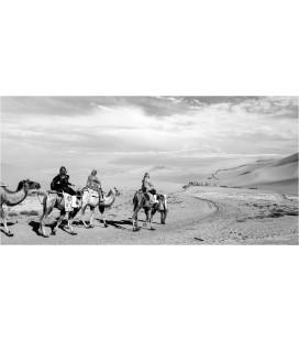Désert du Gobi