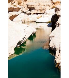 Rencontre Oasis, Oman